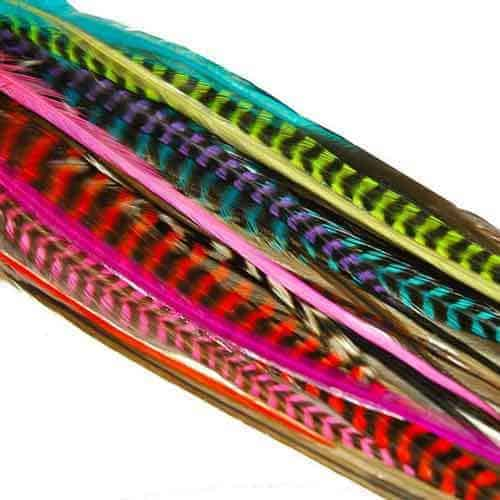 Rainbow_Feathers