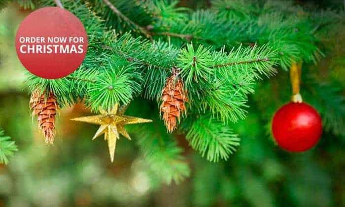 Groupon Christmas