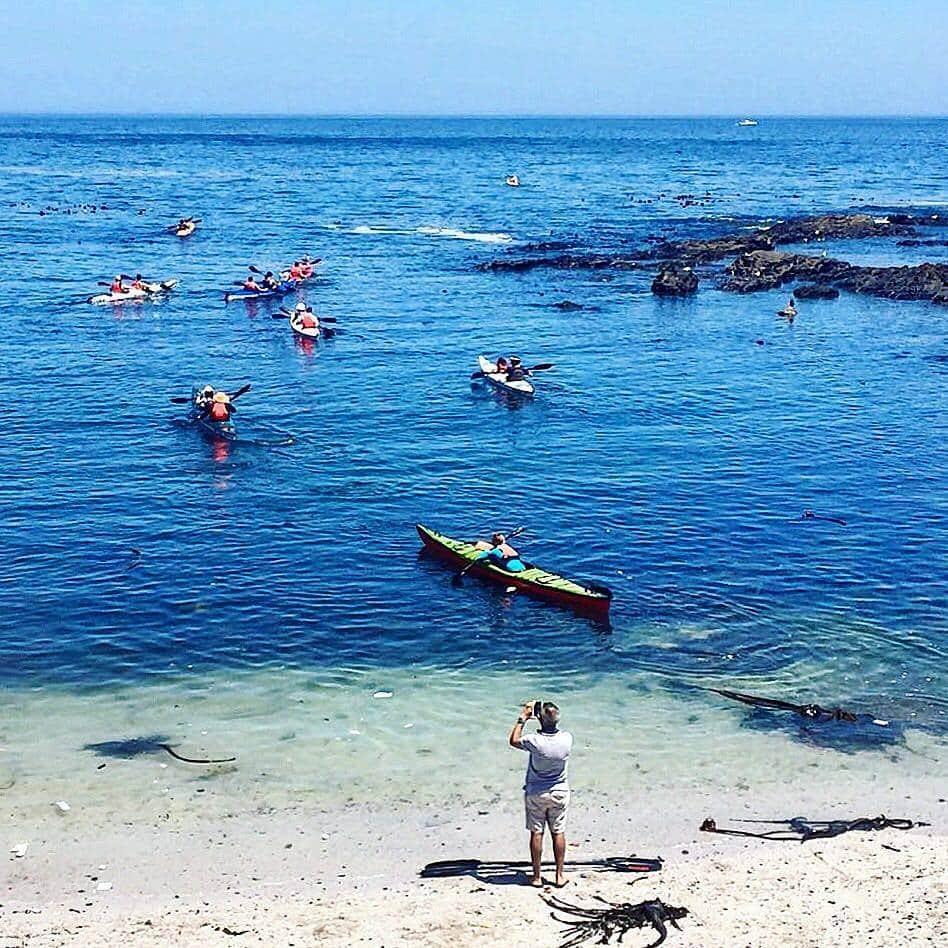 Kayaking cape town