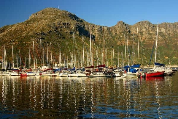 Things to do in Cape Town: Hout Bay Harbour